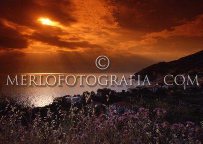 Elba Pomonte ph-merlo 768202 P030205
